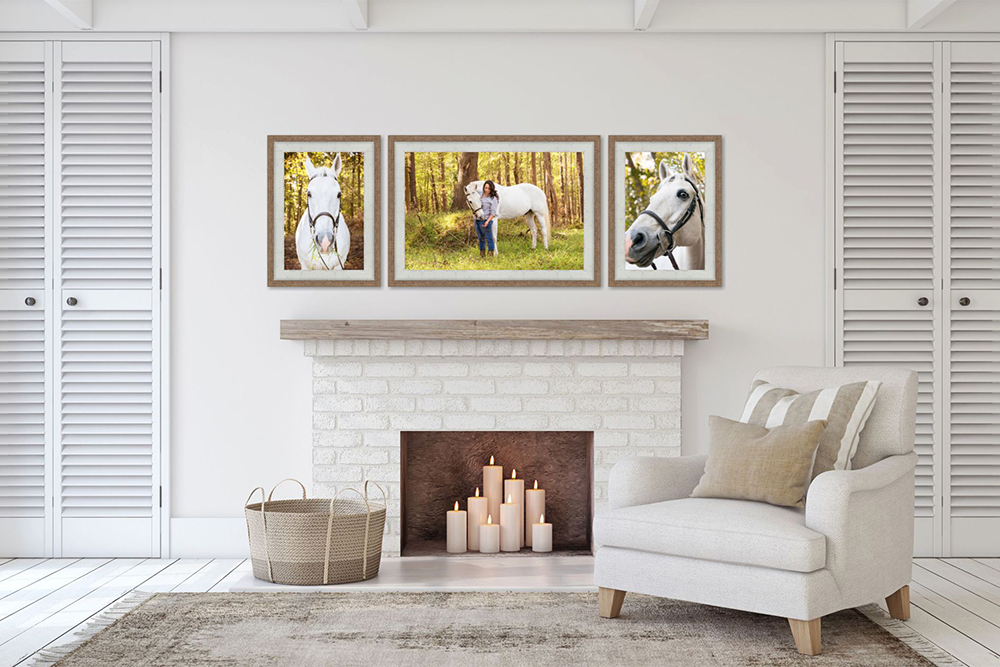 wall art of a horse and rider