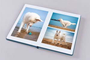 A custom-designed acrylic front image album imported from Europe