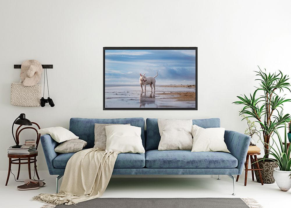 A bull terrier print adorns a living room wall