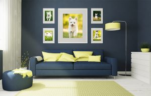 A wall gallery of dog artwork